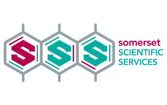 SSS logo brand identity development