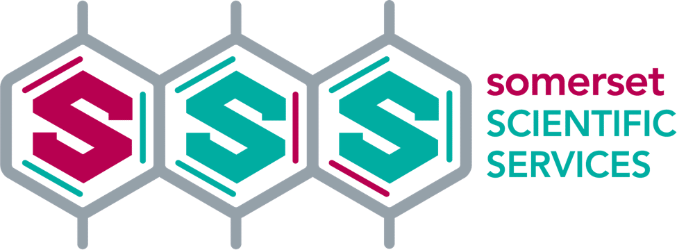 Brand Identity logo development
